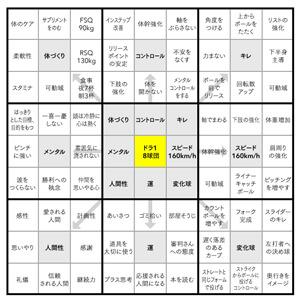 大谷翔平マンダラ300×300